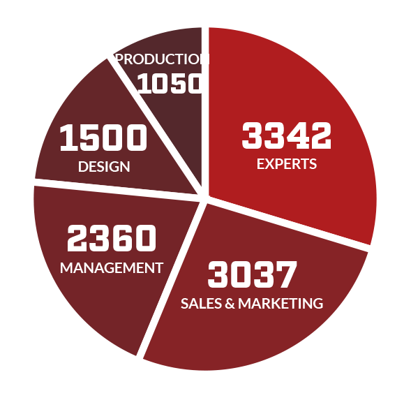 Pie chart of visitors' roles in their companies